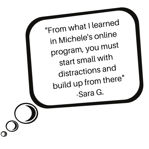 Sara learned to start with small distractions and build from there